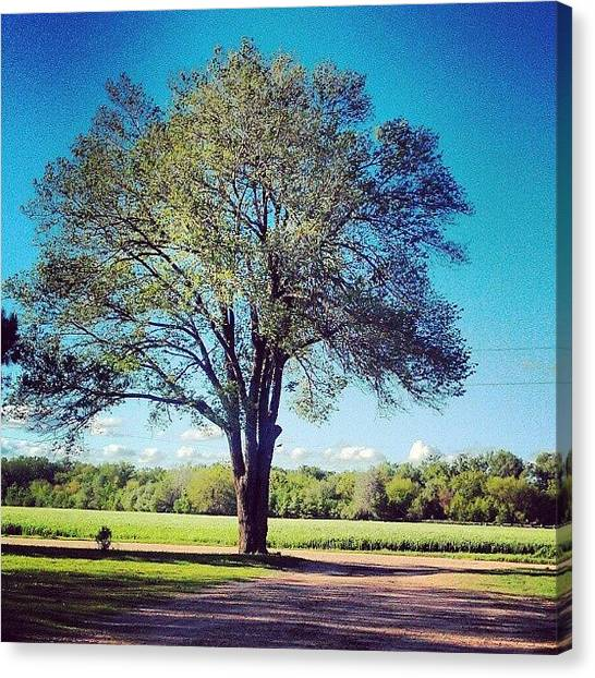 Kansas Canvas Print - Such A Beautiful Day After The Tornado by Emma Holton