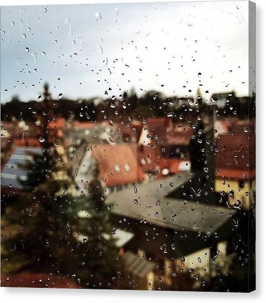Storks Canvas Print - Such A Rainy Day 😔 by Melanie Stork