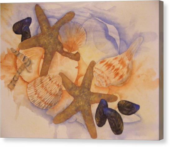 Sue's Seashells Canvas Print