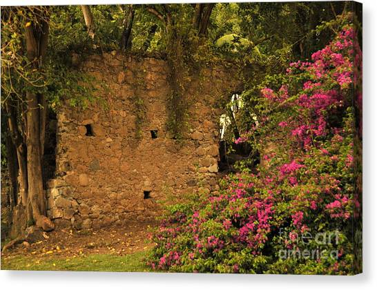 Sugar Mill Of The Past In St. Lucia Canvas Print