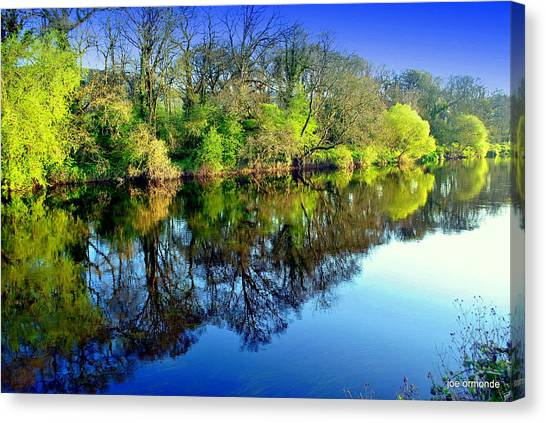 Suir Reflections Canvas Print