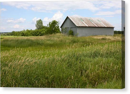 Summer Field Canvas Print
