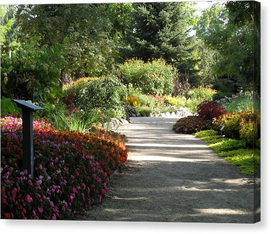 Summer Garden Path Canvas Print