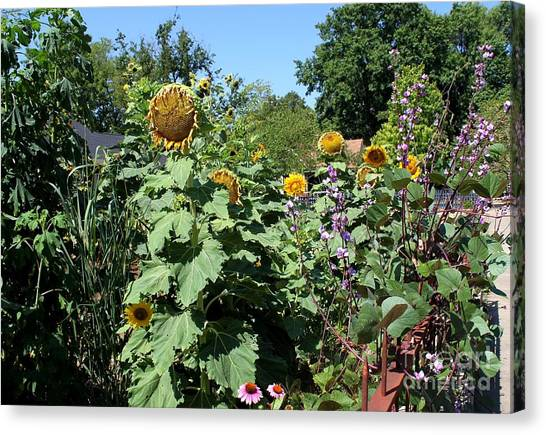 Summer Garden Canvas Print by Theresa Willingham