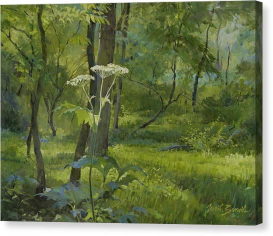 Summer In Fullersburg Woods Canvas Print