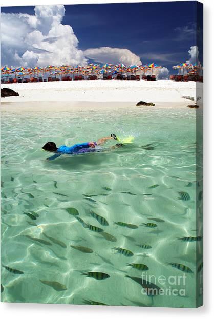 Snorkling Canvas Print - Summer Season by Laddawan Hengtabtim