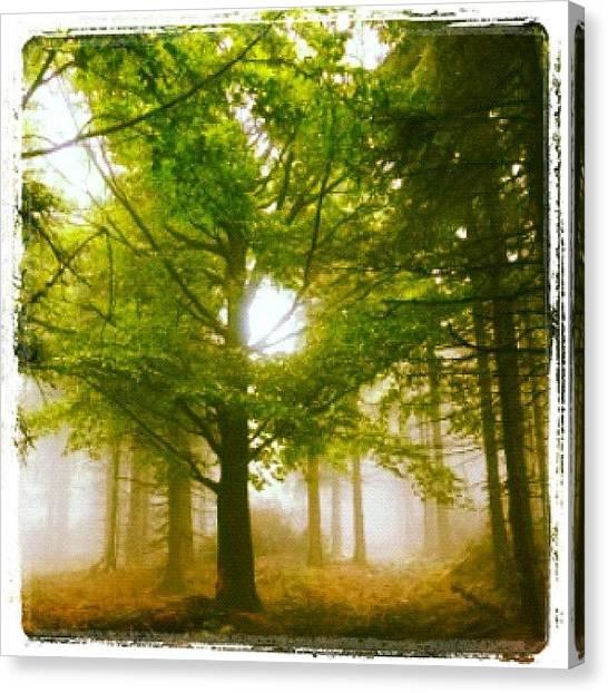Ponds Canvas Print - Summerskyforest by Kim  Nyheim