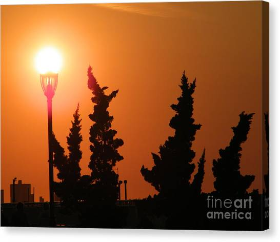 Sun Post Canvas Print by Laurence Oliver