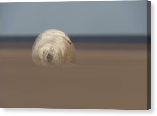 Sun Sea And Sand Canvas Print