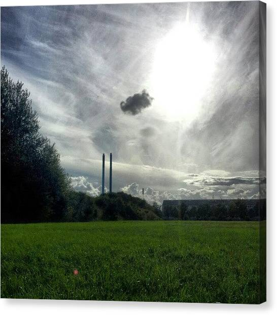 Back Canvas Print - #sun #sky #summer #stillsummer #grass by Ole Back
