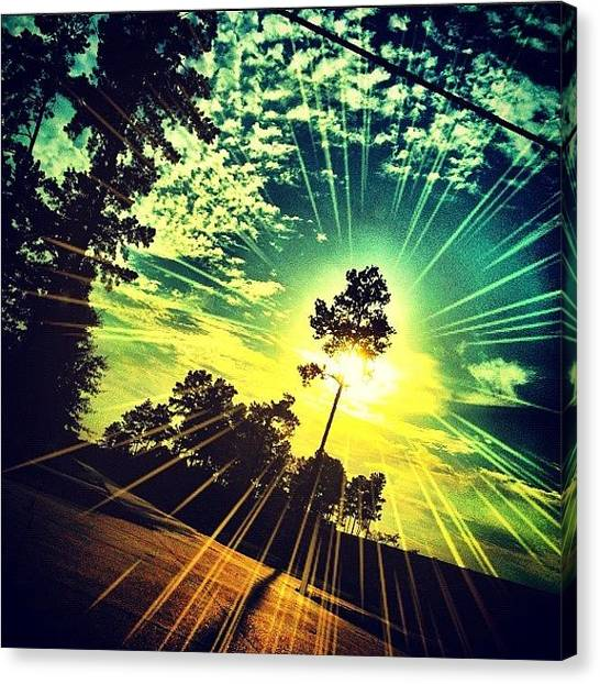 Driving Canvas Print - #sun #sunset #trees #driving #instacool by Kirsten Taubin
