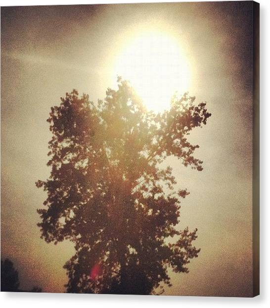 Wyoming Canvas Print - #sun #sunshine #afternoon #tree #trees by Kyle Wright