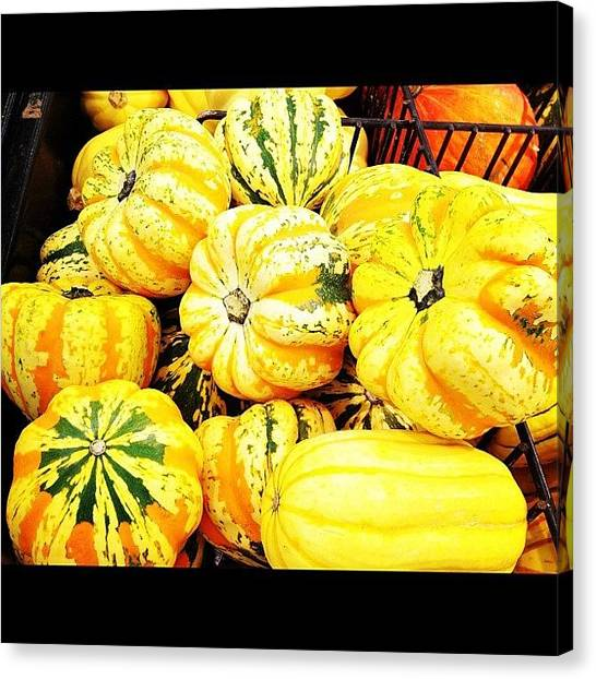Pumpkins Canvas Print - #sunday #afternoon #grocery #shopping by Supat Rattanasuksun