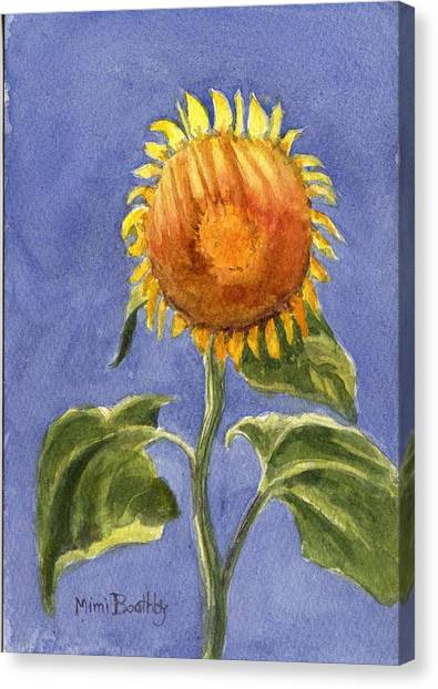 Sunflower Glowing In The Sun Canvas Print