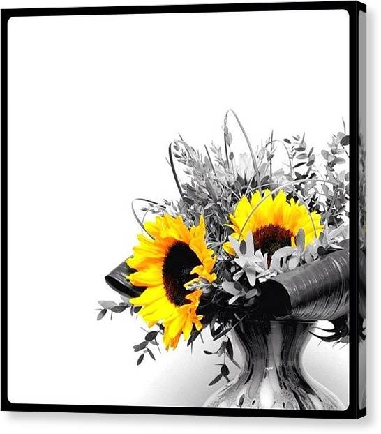 Iphoneonly Canvas Print - Sunflower by Mark B