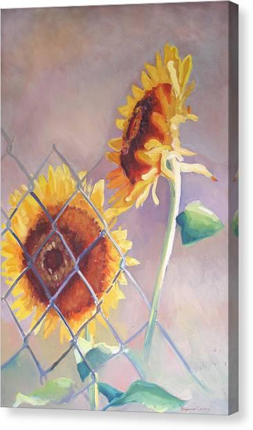 Sunflowers Fenced Canvas Print