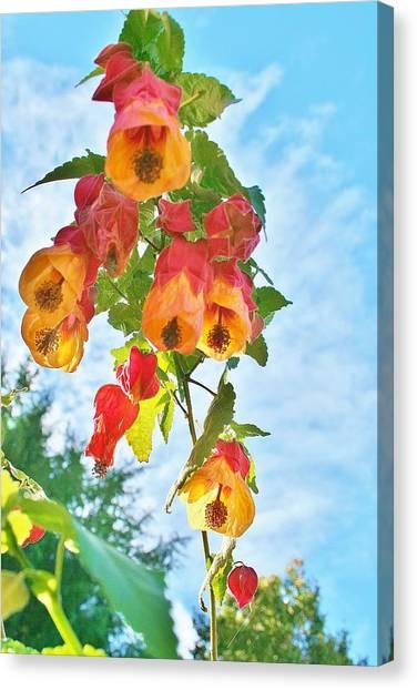 Sunny Bells Canvas Print