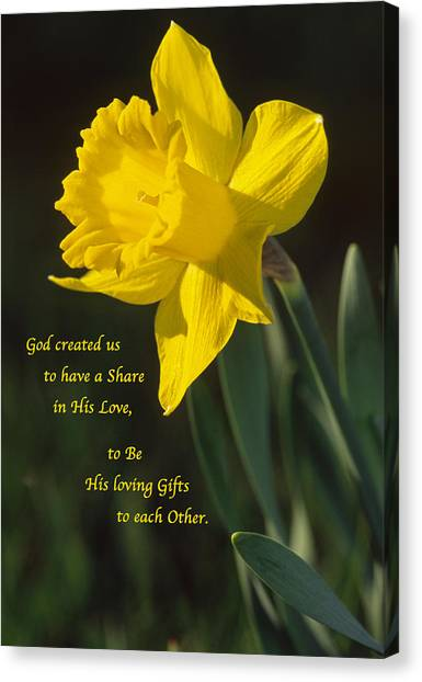 Sunny Daffodil With Quote Canvas Print