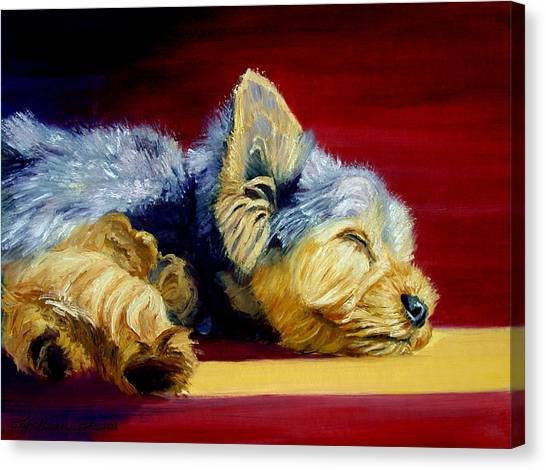 Yorkshire Terrier Canvas Print - Sunny Patch Yorkshire Terrier by Lyn Cook