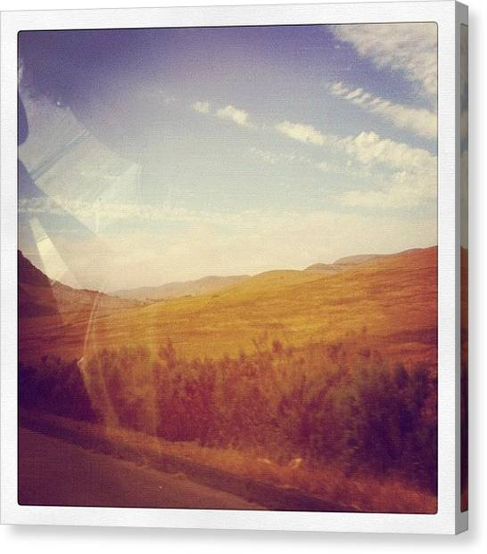 College Canvas Print - #sunnyskies #summertime #slo by Megan Harkins