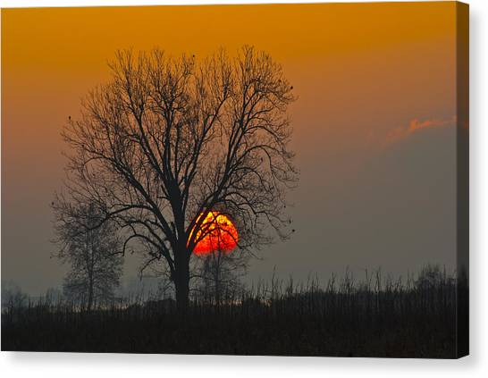 Sunrise - 4810 Canvas Print
