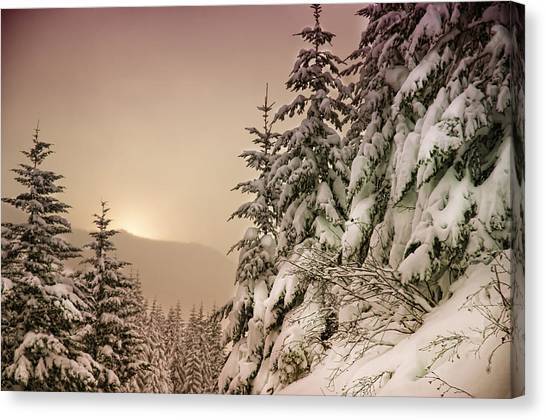 Sunrise At Mt Rainier Canvas Print by Nichon Thorstrom