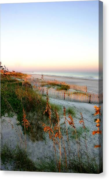 Sunrise On Sea Oats -2 Canvas Print by Alan Hausenflock