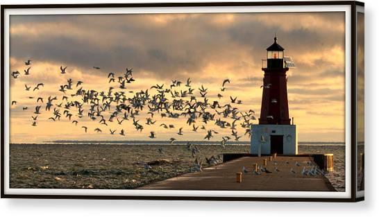 Sunrise Seagulls 219 Canvas Print