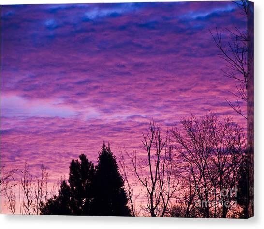 Sunrise Surprise 2 Canvas Print by Scotts Scapes