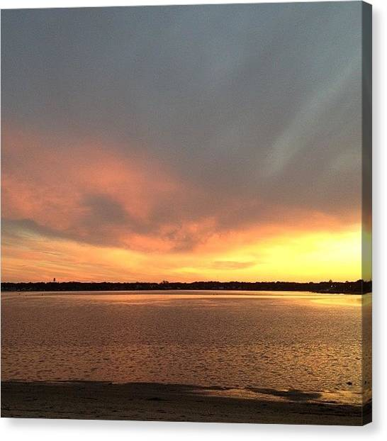 Hammerhead Sharks Canvas Print - Sunset by Alison K