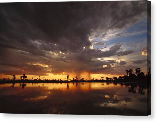 Okavango Swamp Canvas Print - Sunset And Storm Clouds Over Waterhole by Gerry Ellis