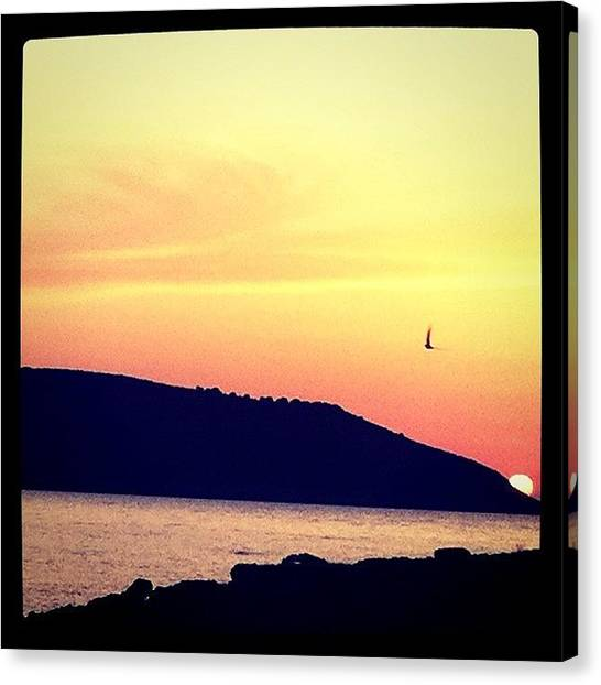 Greece Canvas Print - Sunset And The Bird by Seras S
