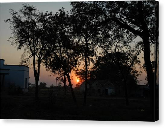 Sunset Behind Trees Canvas Print by Johnson Moya