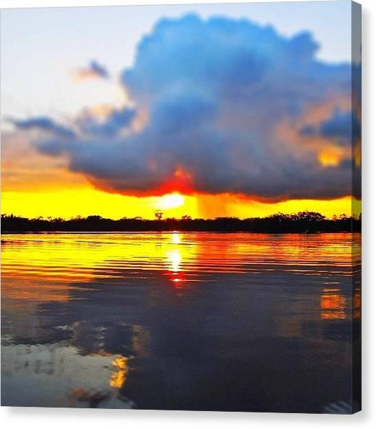 Jungles Canvas Print - #sunset #ecuador #jungle #rainforest by Alon Ben Levy