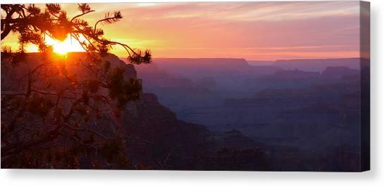Sunset In Grand Canyon Canvas Print by Olga Vlasenko