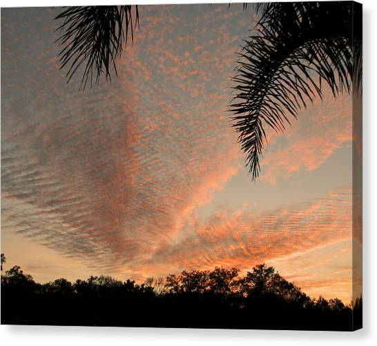 Sunset In Lace Canvas Print
