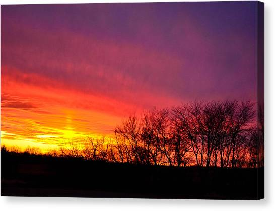 Sunset In Trees Canvas Print by Julio n Brenda JnB