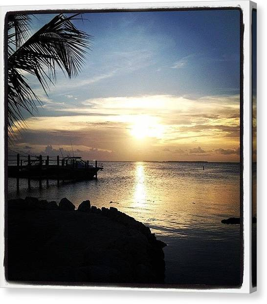 Palm Trees Canvas Print - Sunset Mm88 by Michele Green Williams
