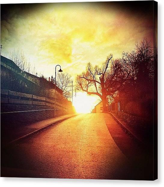 Storks Canvas Print - Sunset Moments ... 🌅 by Melanie Stork