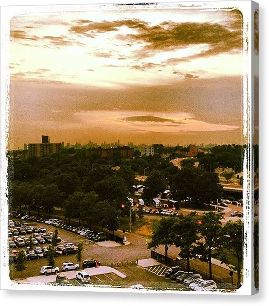 Apple Tree Canvas Print - Sunset Over Citifield by Rebecca Shinners