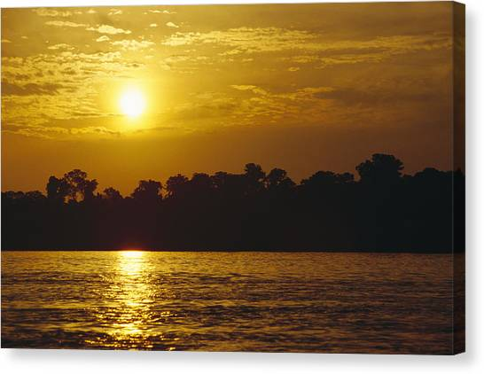 Amazon River Canvas Print - Sunset Over Lowland Tropical Rainforest by Gerry Ellis