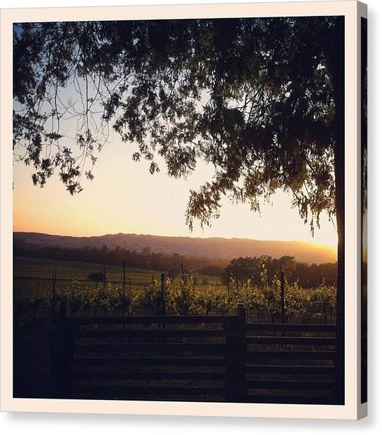 Winery Canvas Print - Sunset Over Sonoma Valley by Crystal Peterson