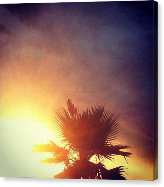 Palm Trees Sunsets Canvas Print - #sunset #palm #tree #palmtree #sun by Andres Correa