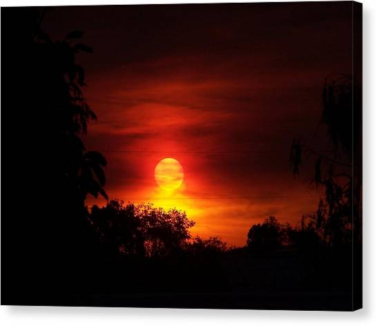 Sunset Canvas Print by Richard Adams