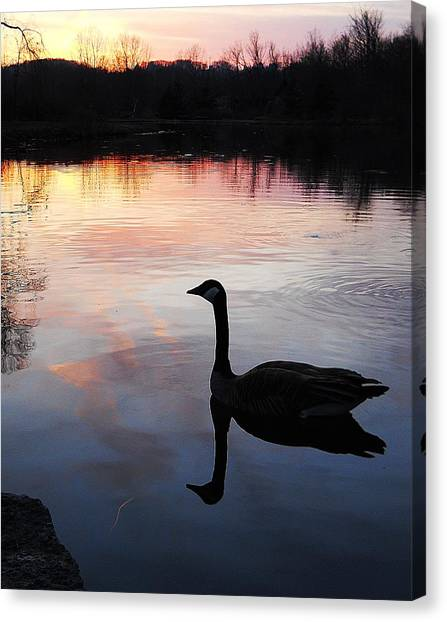 Sunset Serenity Canvas Print by Shelley Patten-Forster