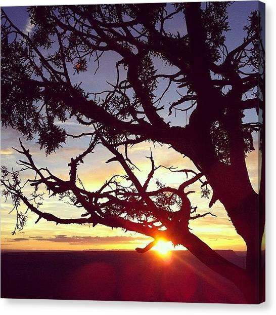 Soda Canvas Print - Sunset by Soda Love