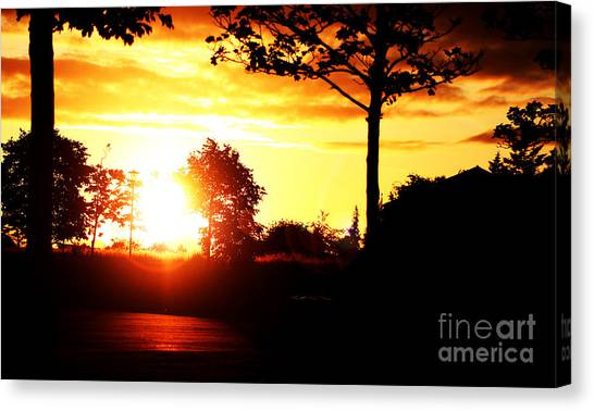 Sunset Soon Canvas Print by Alexander Photography