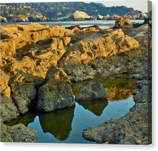 Sunset Tidepool Larry Darnell Point Lobos Central California Landscape Canvas Print by Larry Darnell