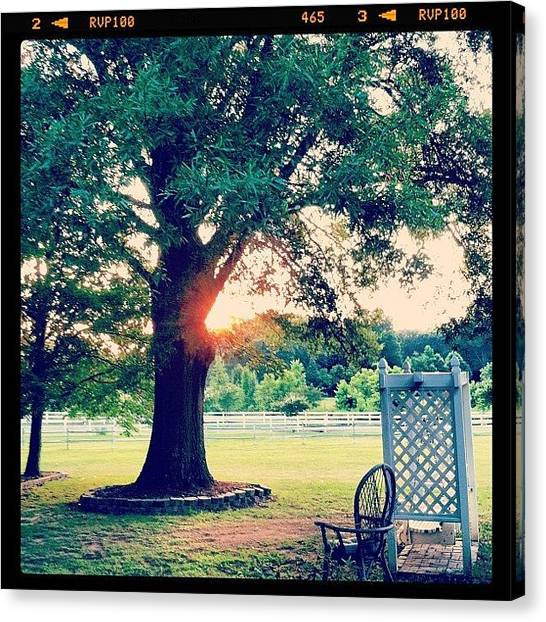 Swing Canvas Print - #sunset #yard #homesweethome #nature by Lori Lynn Gager