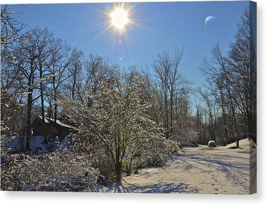 Sunshine In The Snow Canvas Print by Nancy Rohrig